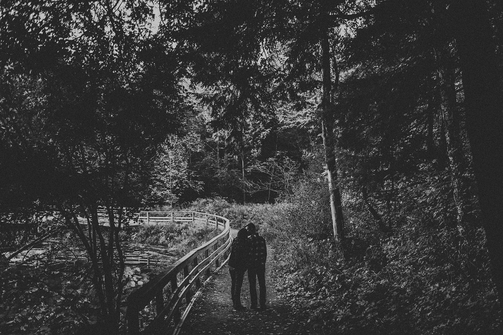 kitchener-ontario-forest-engagement-2