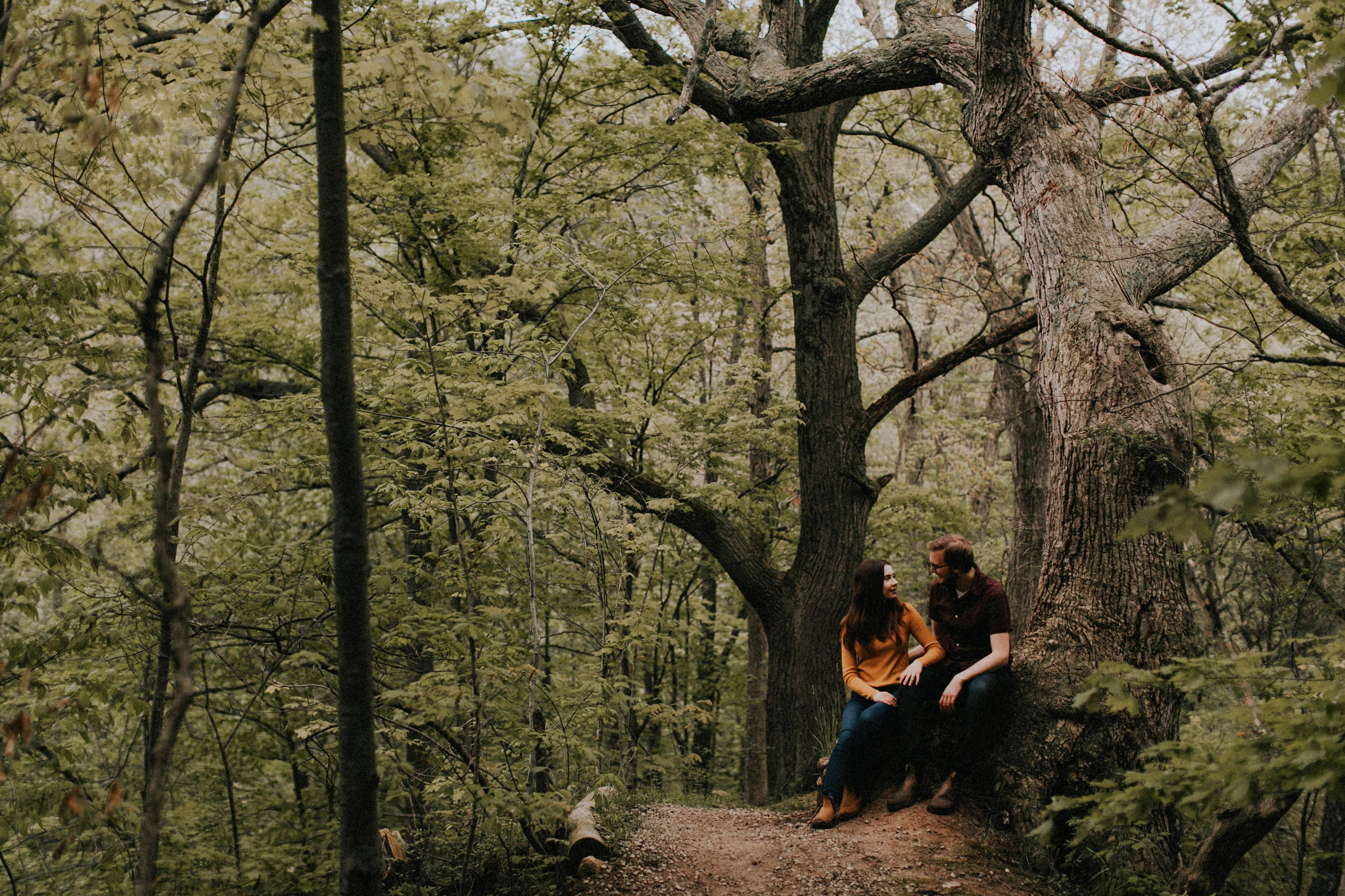 couple sitting on stump