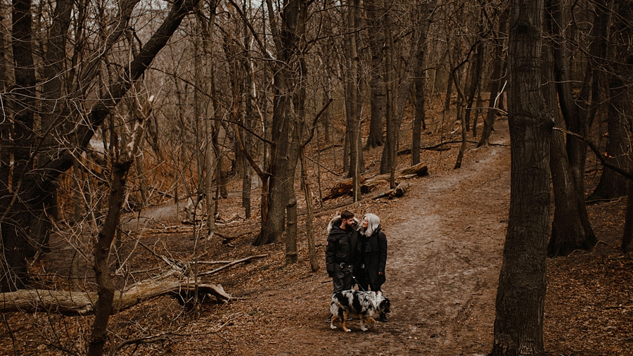 couple stand in dead forest high park